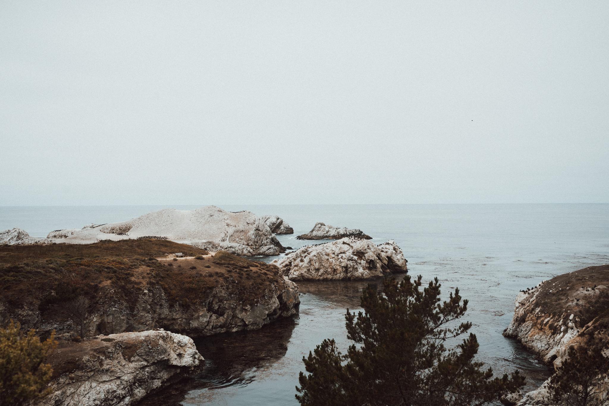 Big Sur-1266.jpg