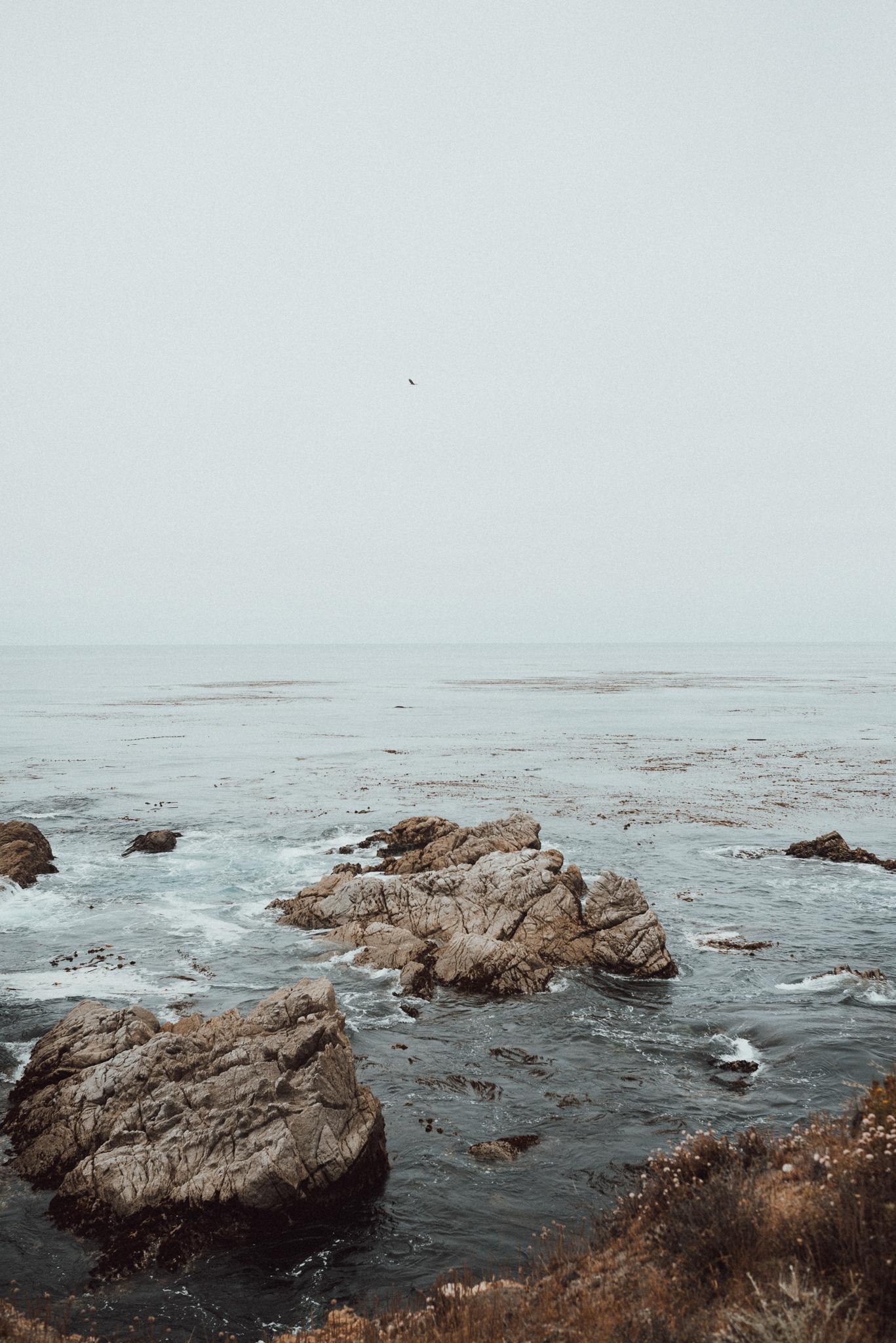 Big Sur-1271.jpg