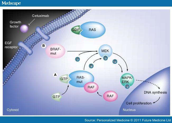 Proof Of Concept Qameleon Therapeutics