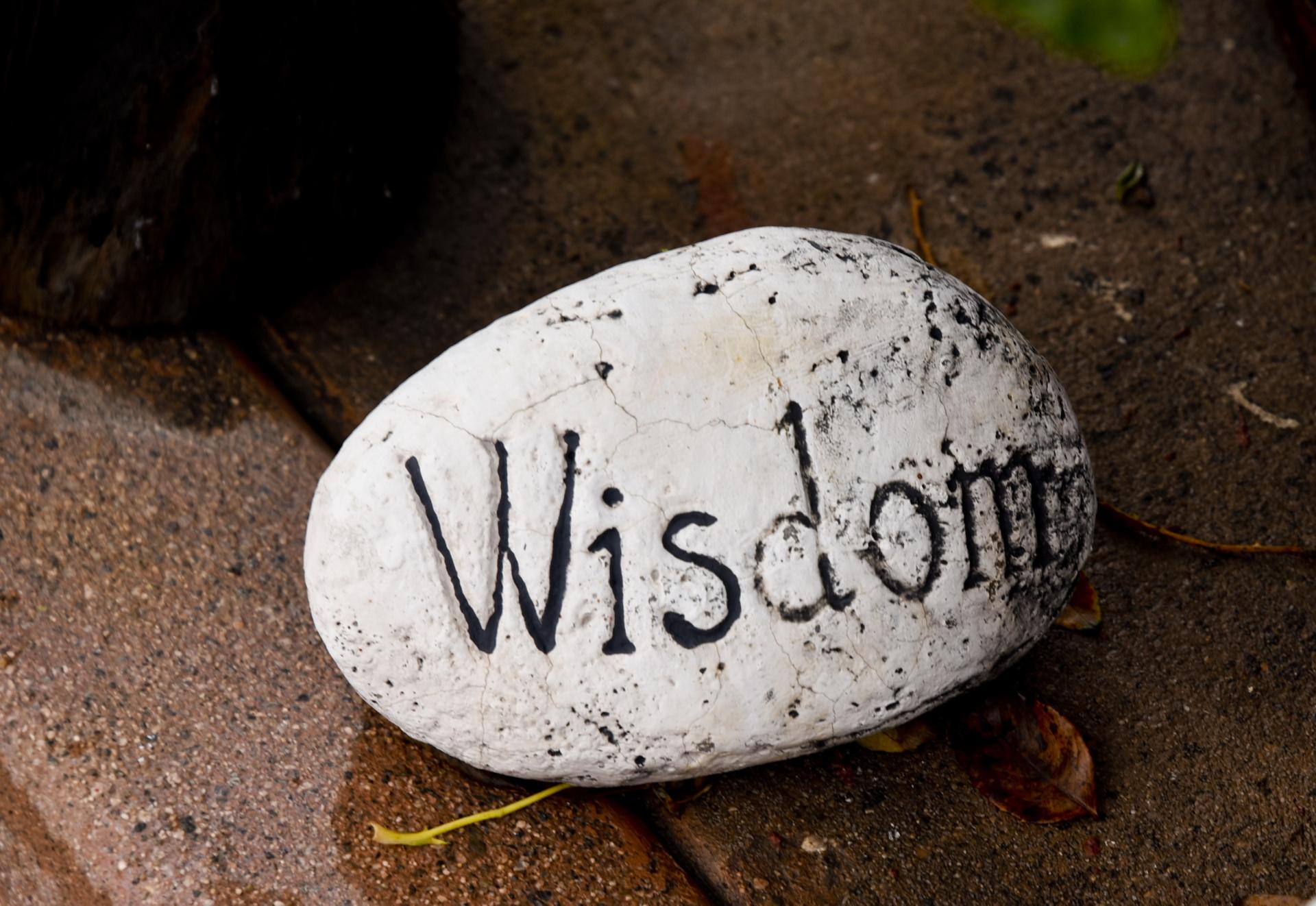 business analysis wisdom