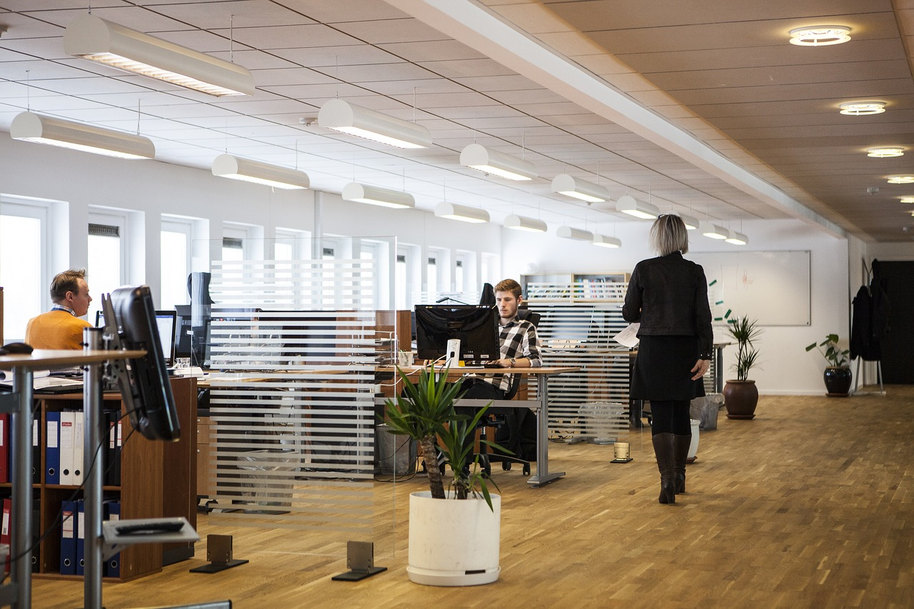 business analyst office