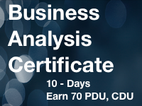 business+analyst+certificate+program.png