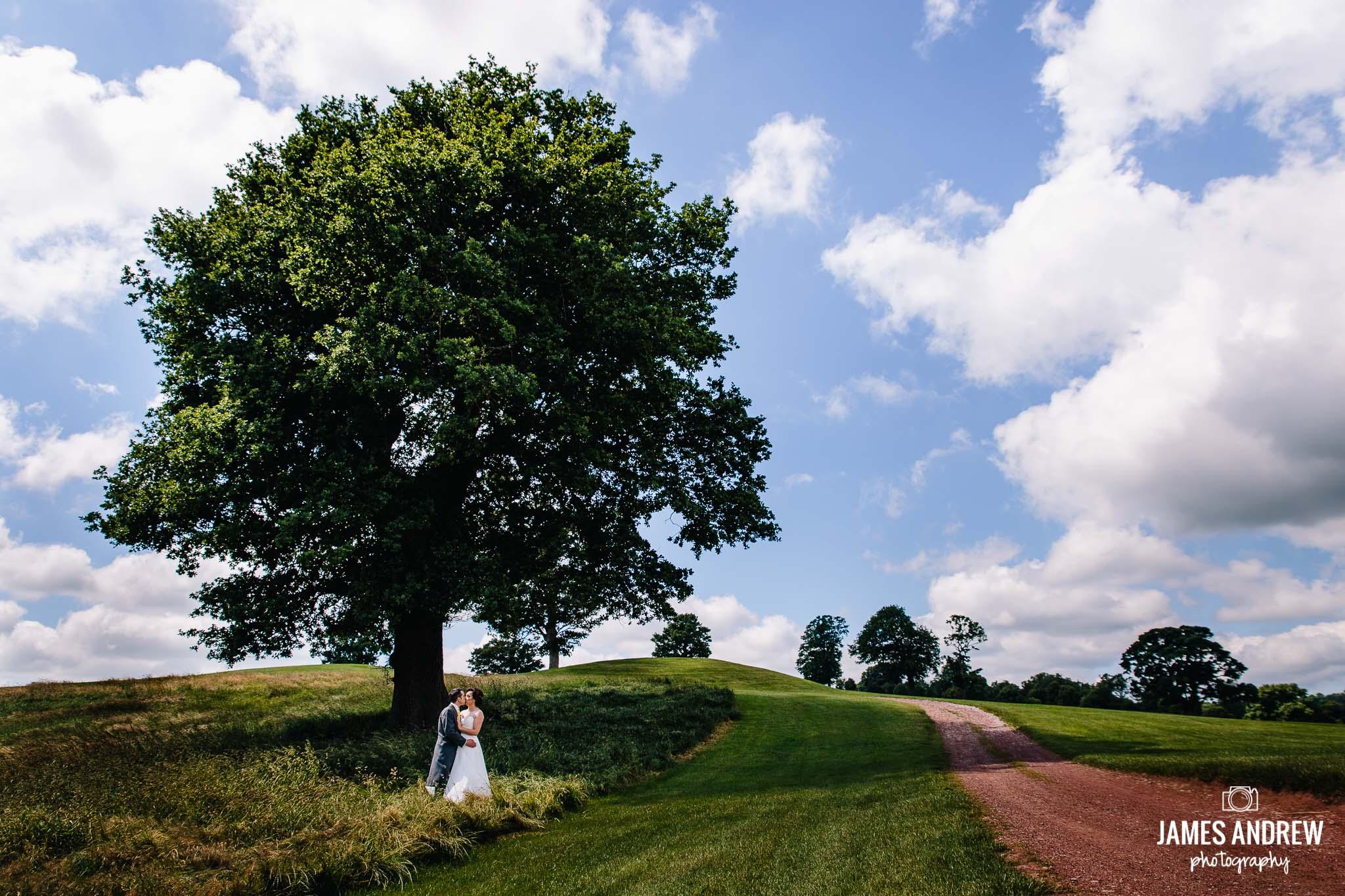 Wedding Couple Under Oak Tree Macdonald Portal Hotel cheshire north west