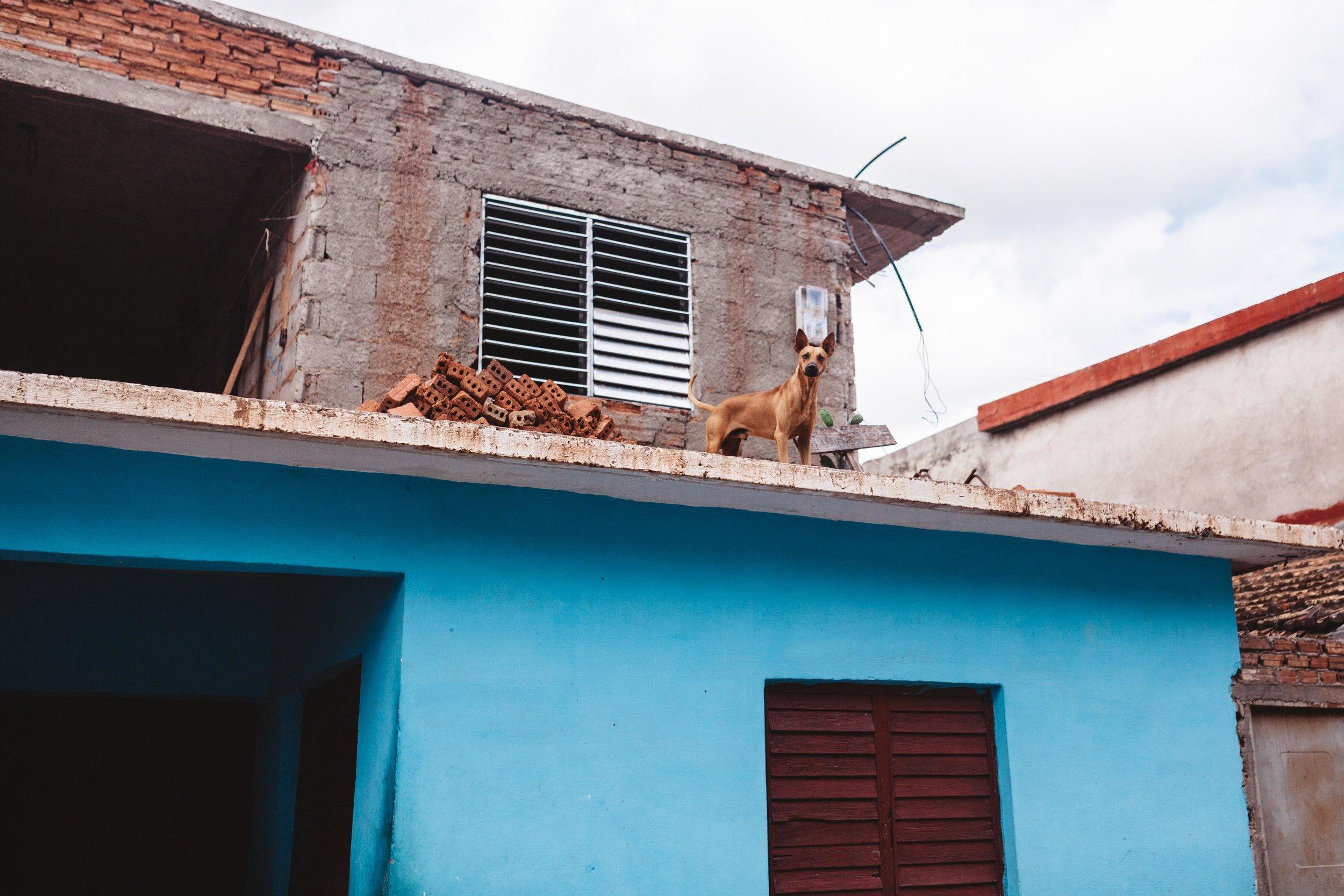 Cuba2017-98.jpg