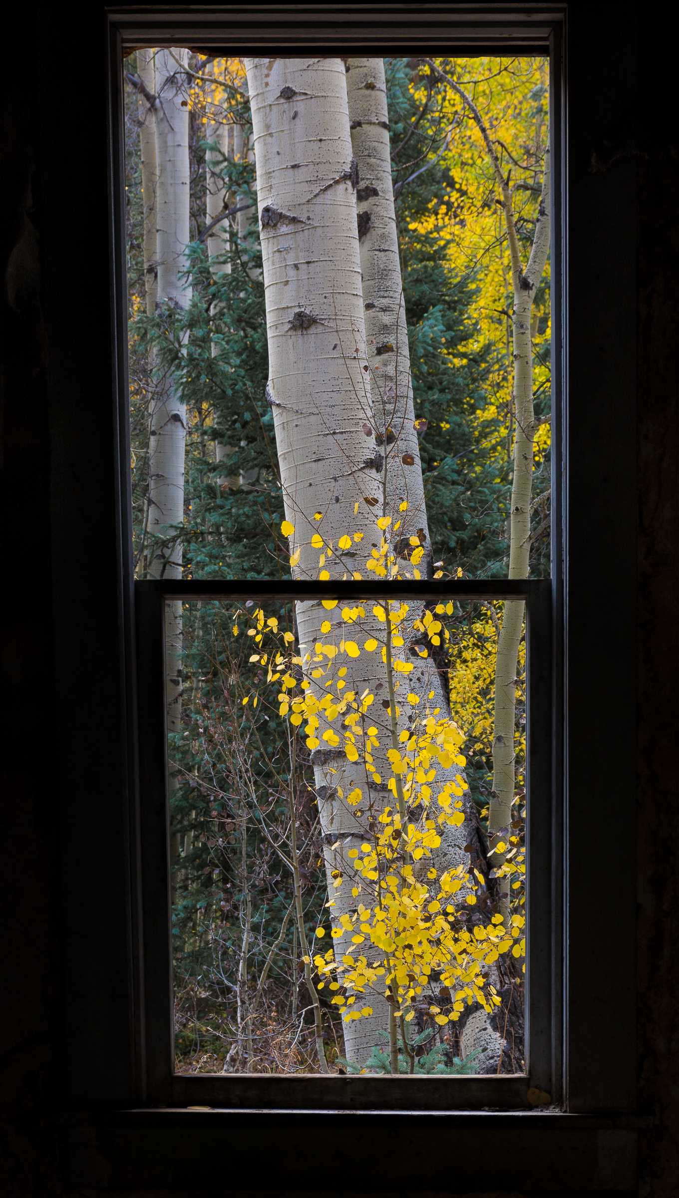 Through an Ironton Window
