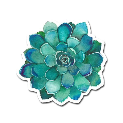 $1.99 TEAL SUCCULENT STICKER