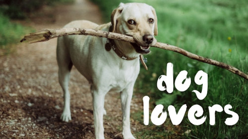 DOG+LOVERS.jpg
