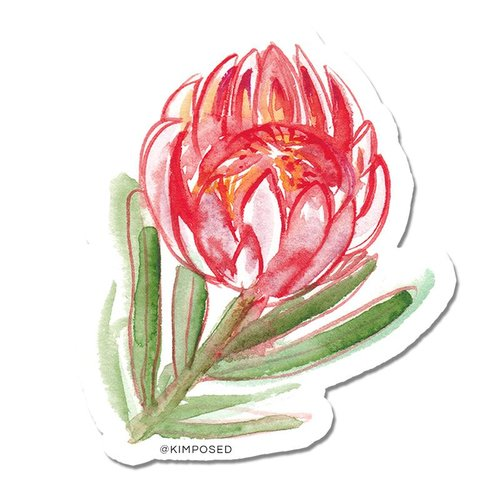 $1.99 PROTEA FLOWER STICKER