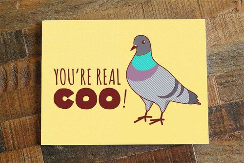 $4.49 YOU'RE REAL COO PIGEON CARD