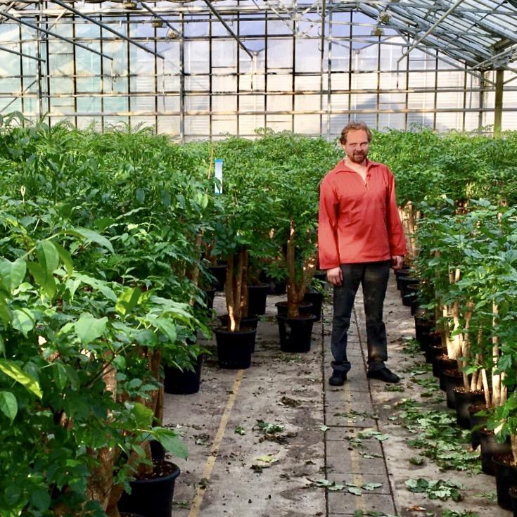 Cedric Jardin - Relentless Gardener / Problem Solver