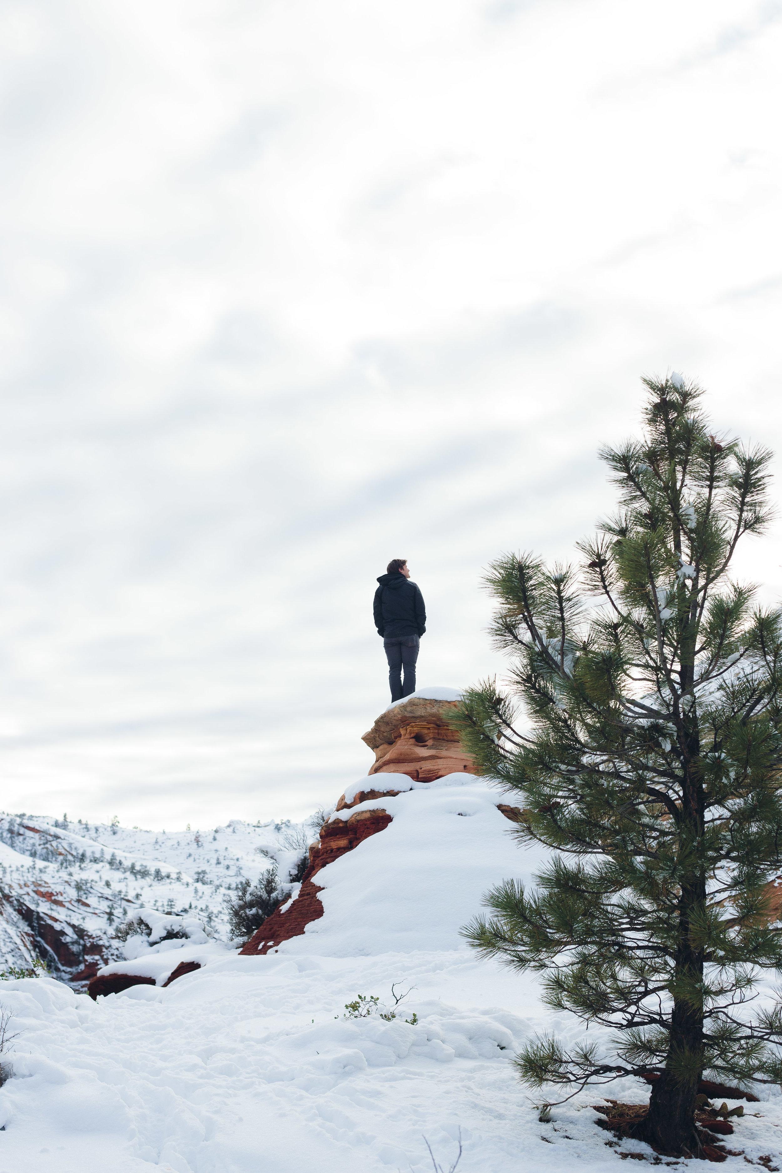 Zion National Park Portraits