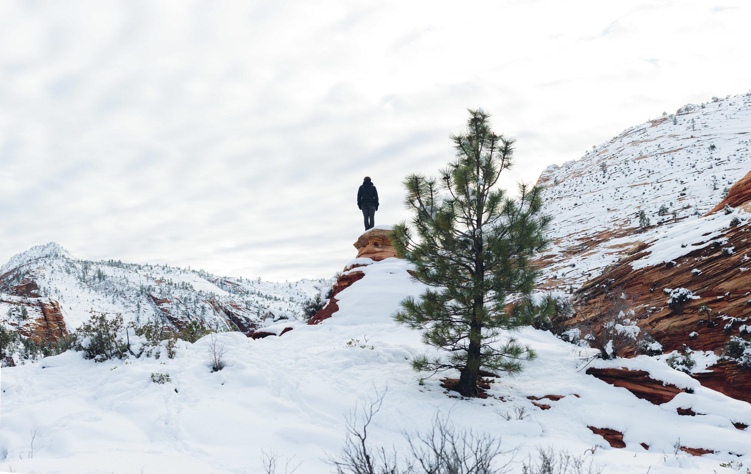 Epic landscape Zion National Park