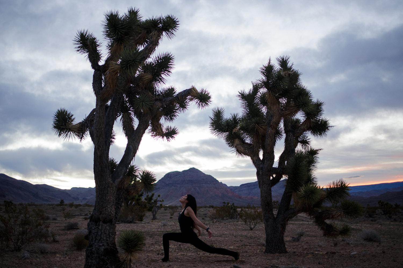 Yoga in the desert Joshua Trees