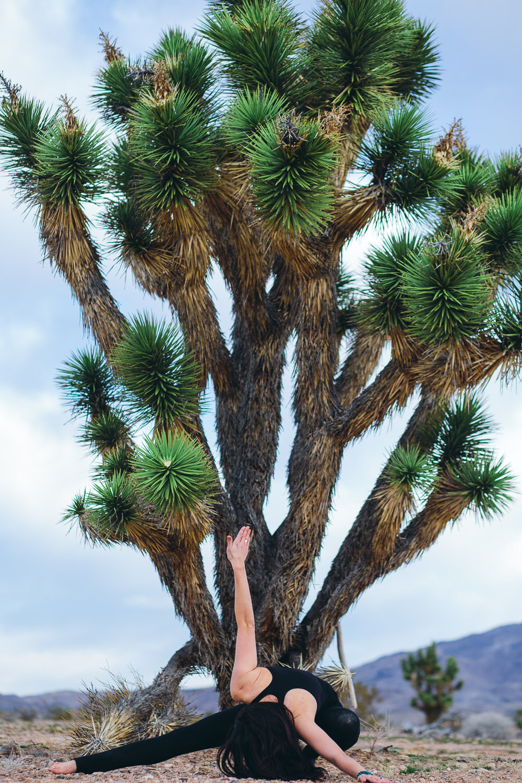 Joshua Tree Yoga Southern Utah Adventure photographer hybrid film and digital
