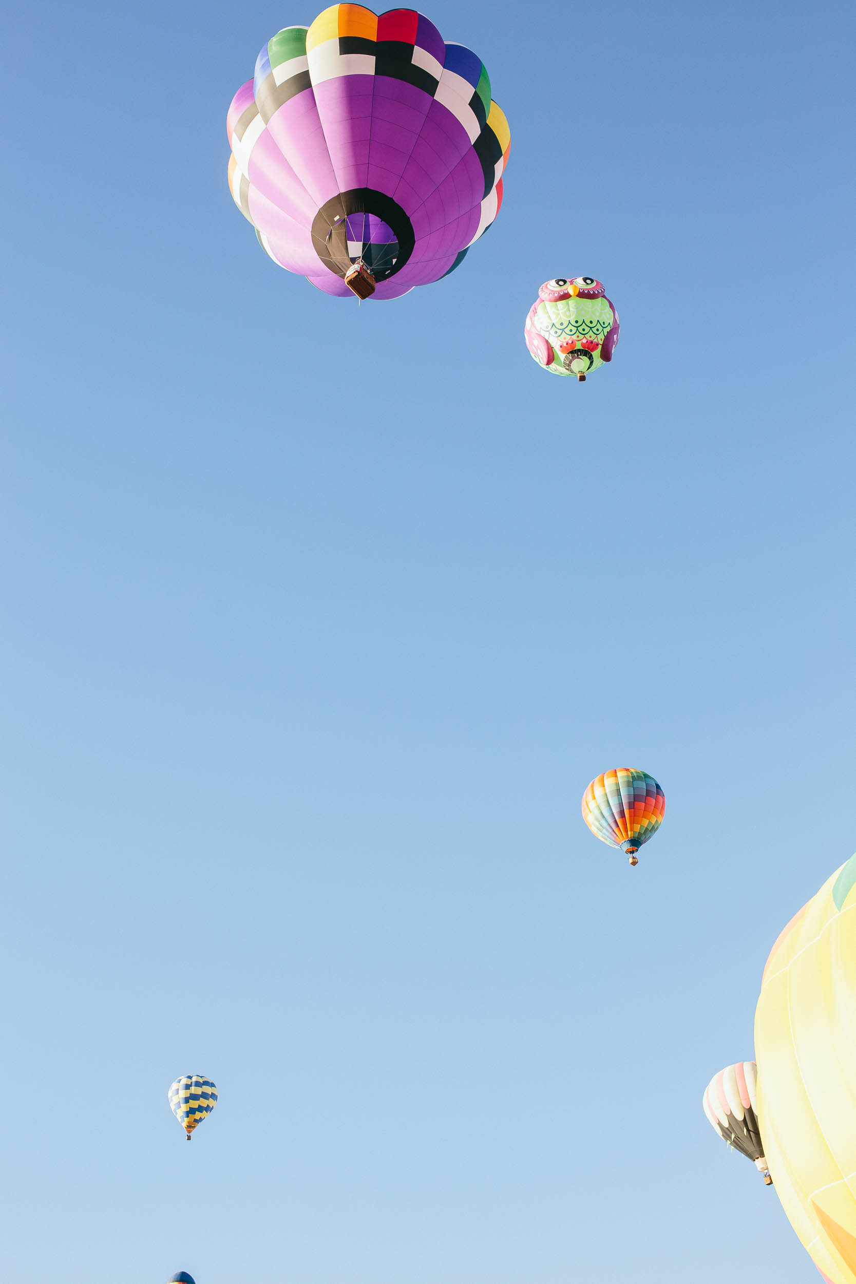 Kyle-Sheppard-Kanab-Balloon-Festival-16.jpg