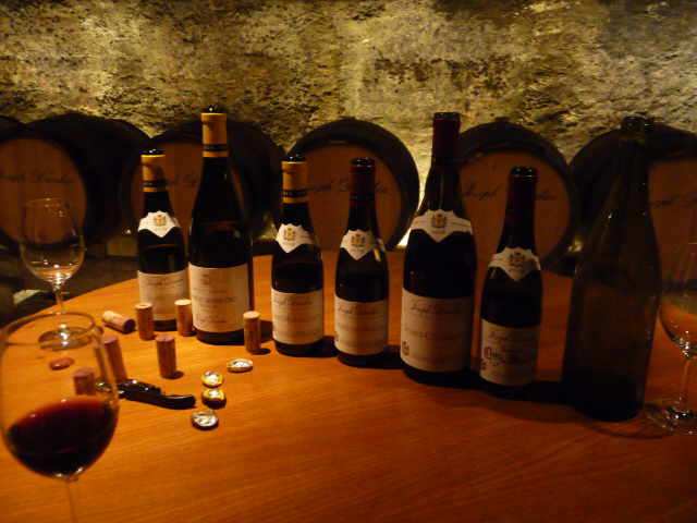 Tasting Clos de Mouches rouge et blanc in the cellars of Joseph Drouhin