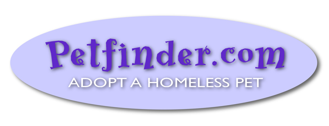 Petfinder_Logo_web.jpg