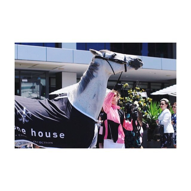 Olli at @doltonehousebe #melbournecup #event @thoroughlyolli ✌🏼️🎉