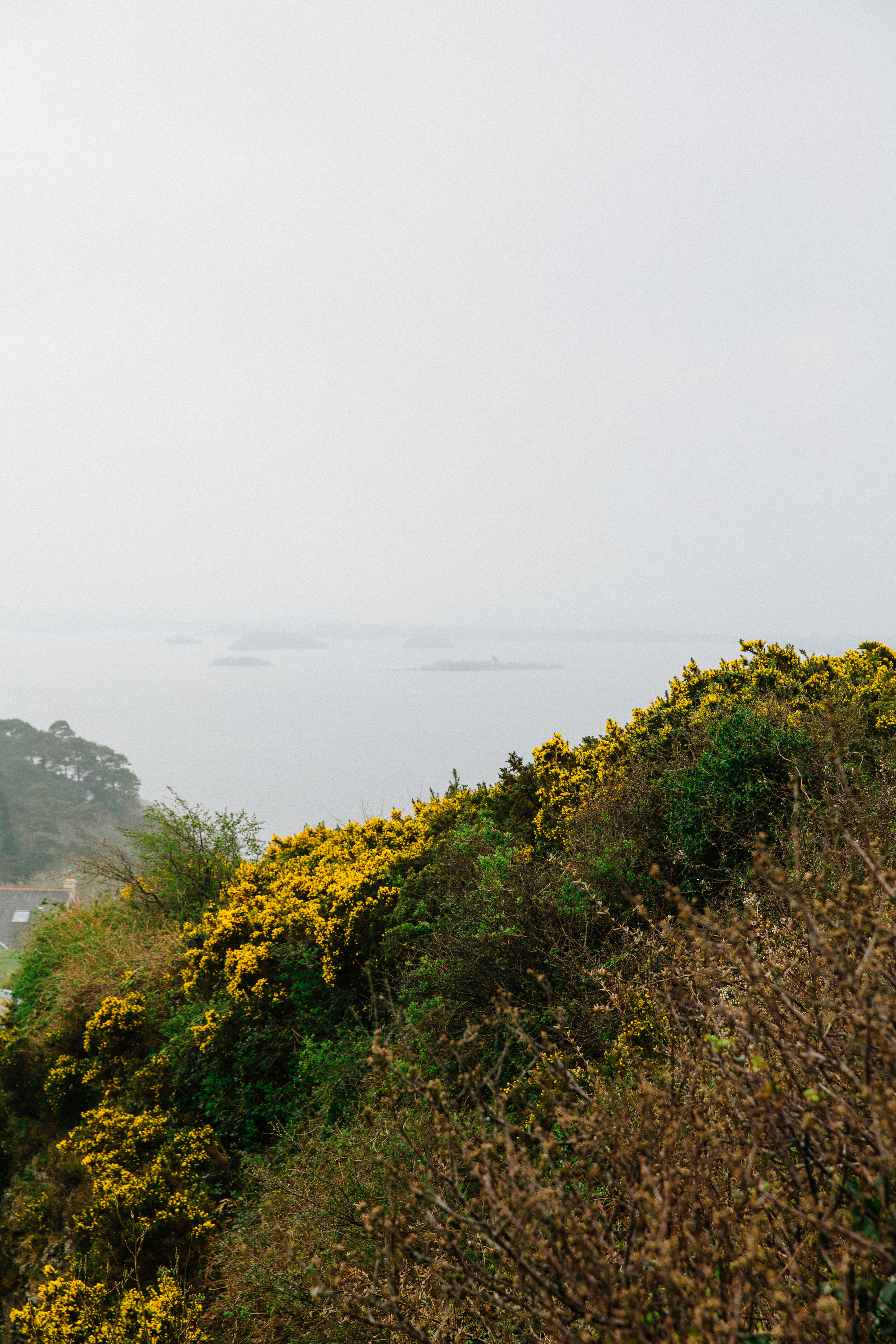 Jen_Montgomery_Photography_UK_Wales_Ireland_Iceland_FB-205.jpg