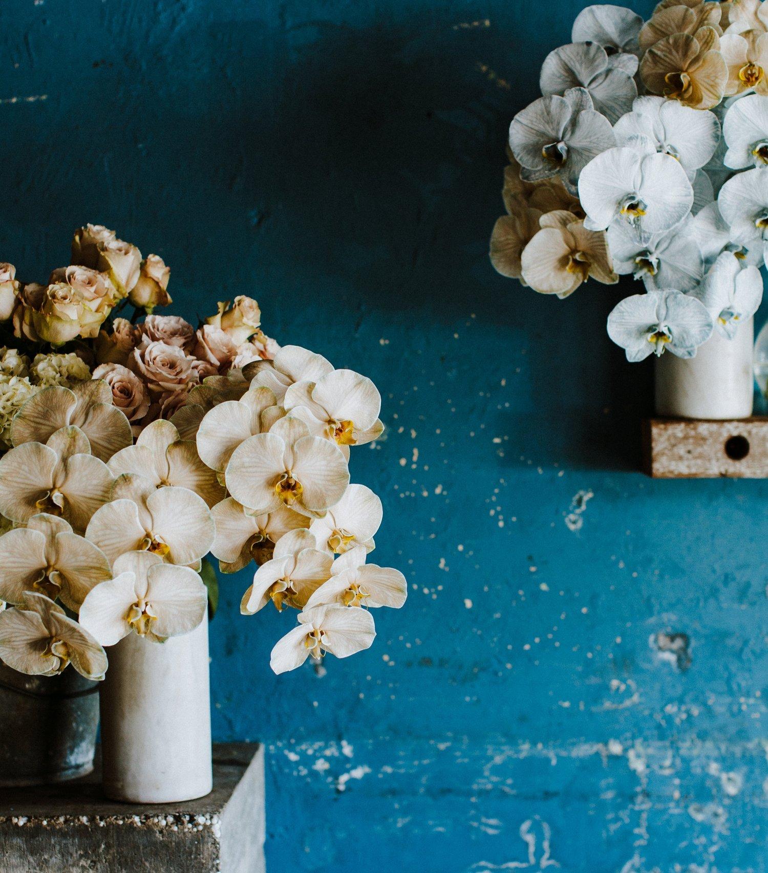 The+Flowerseekers_by_Luisa+Brimble-219.jpg