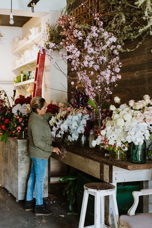The+Flowerseekers_by_Luisa+Brimble-113.jpg