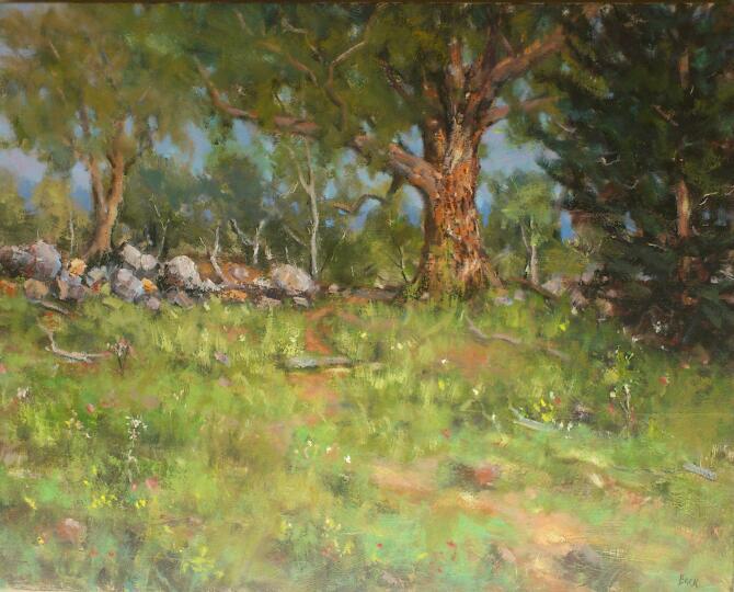 Sofala Landscape. NSW.
