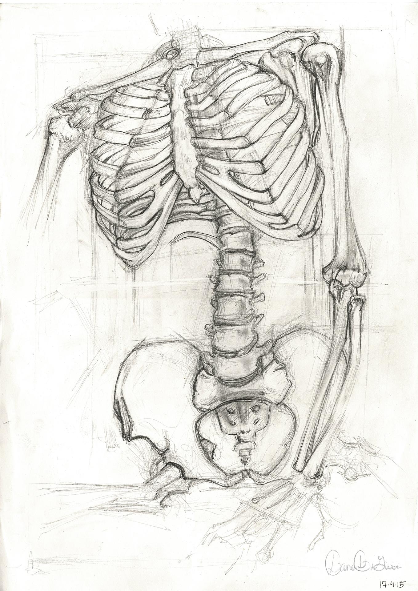 Skeleton_3.jpg