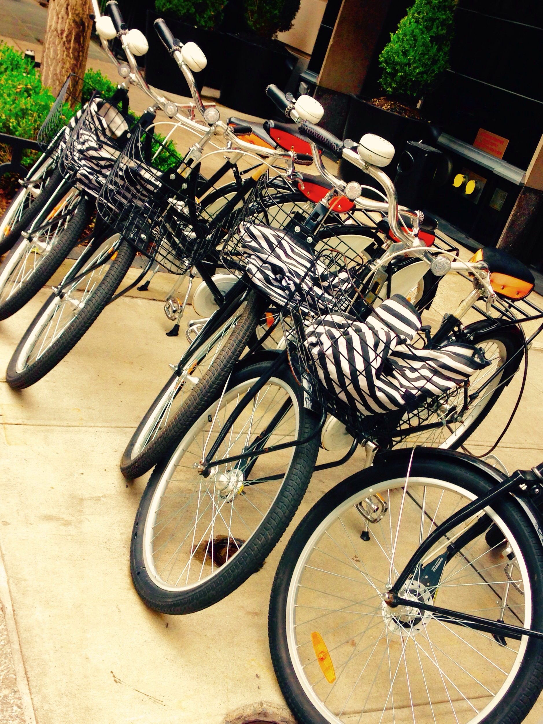 bikes outside The Mark hotel... definitely a nice perk!