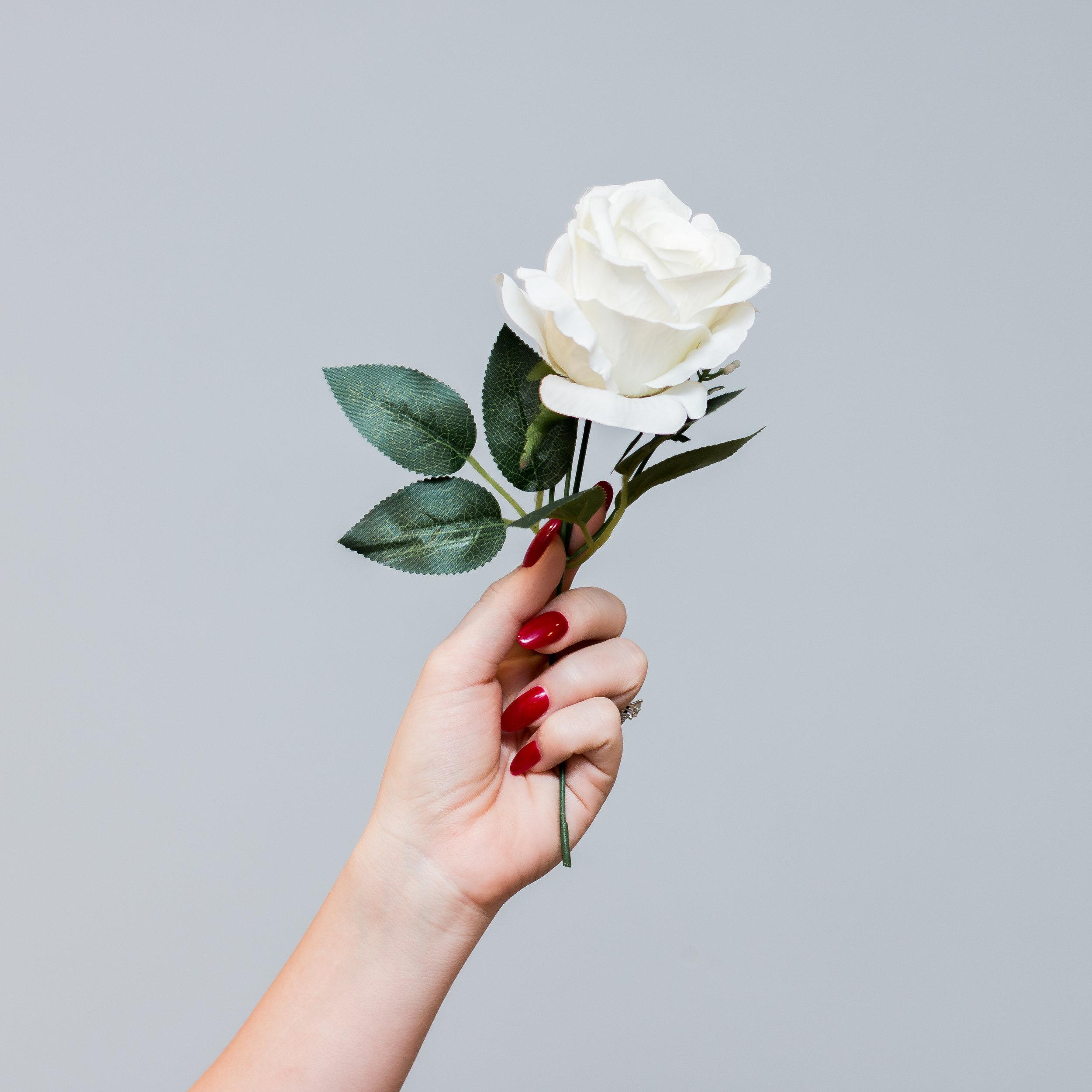 emilysotiphotography-roses-13.jpg