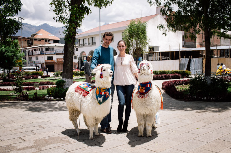 We love travelling... and lamas also...