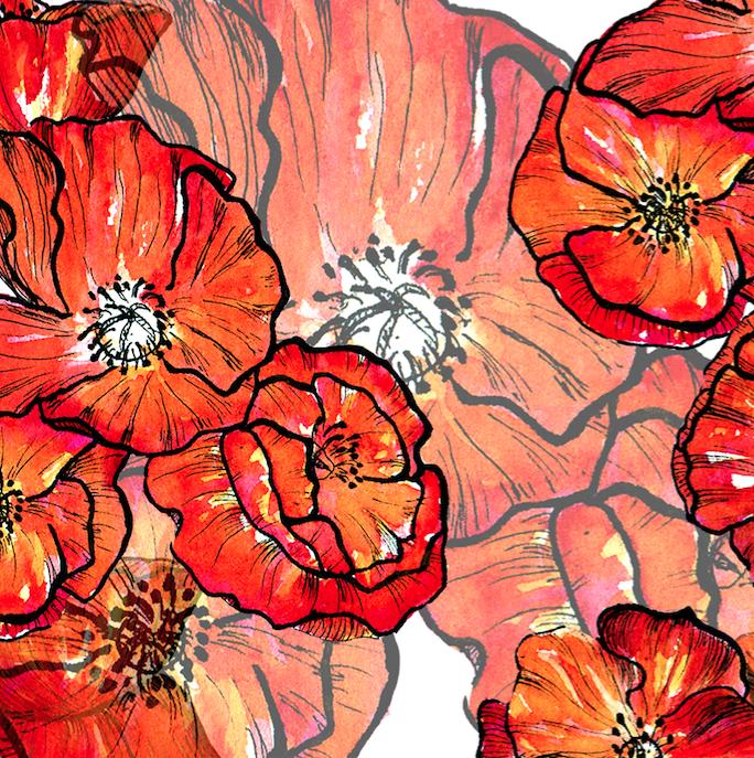ashleychase poppyflower.png