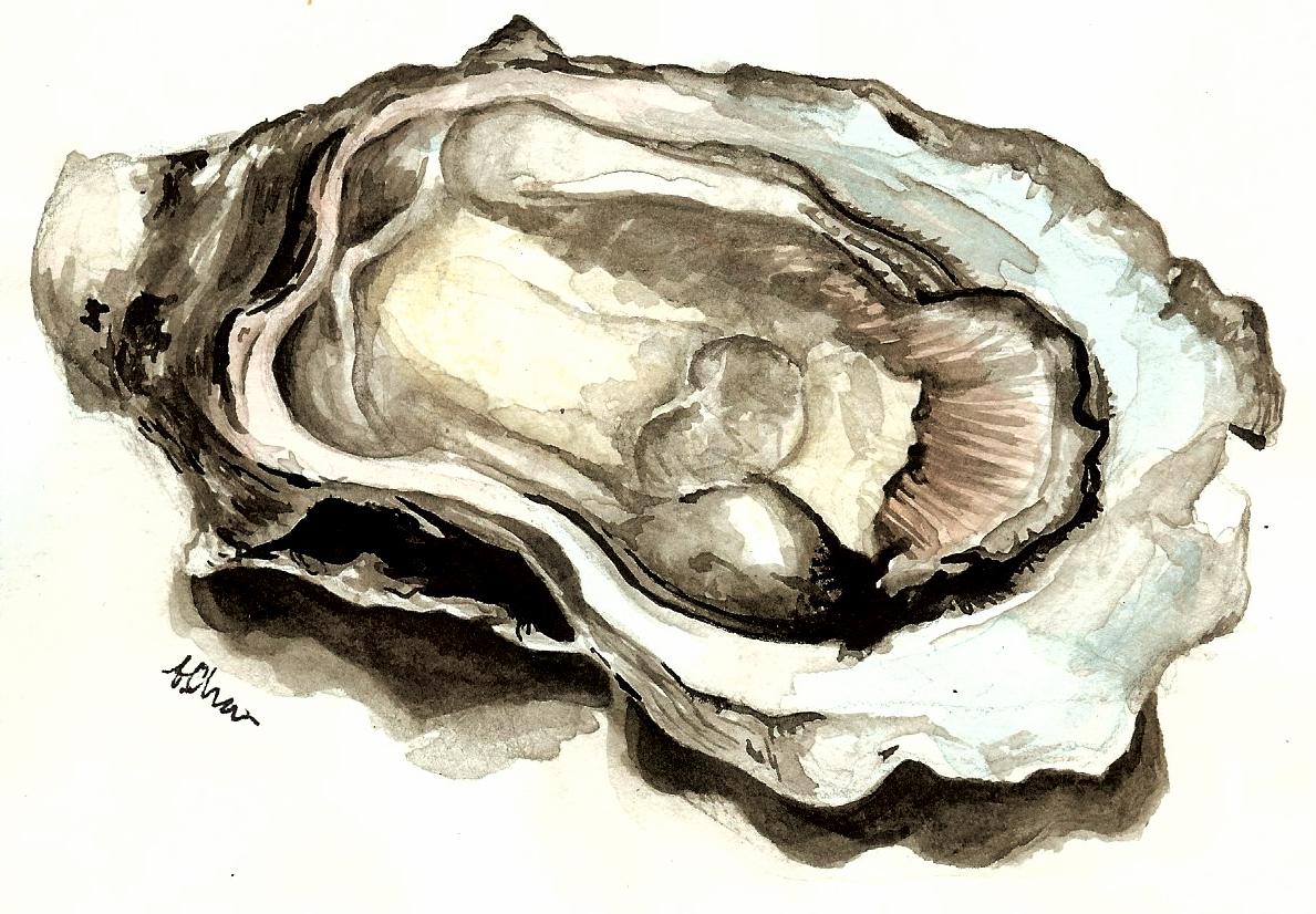 Oyster 6x4.25.jpg