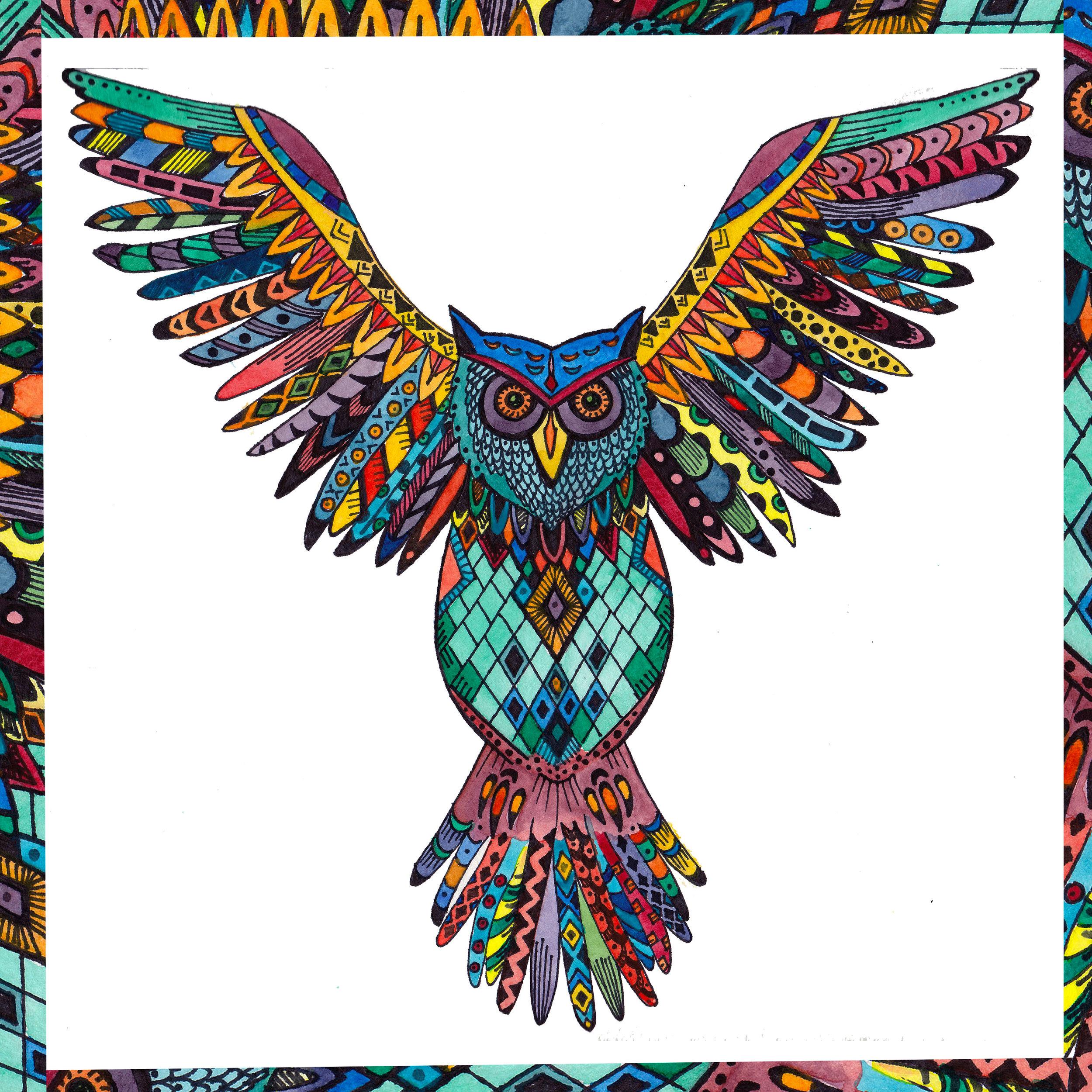 Traegars Owl with border.jpg