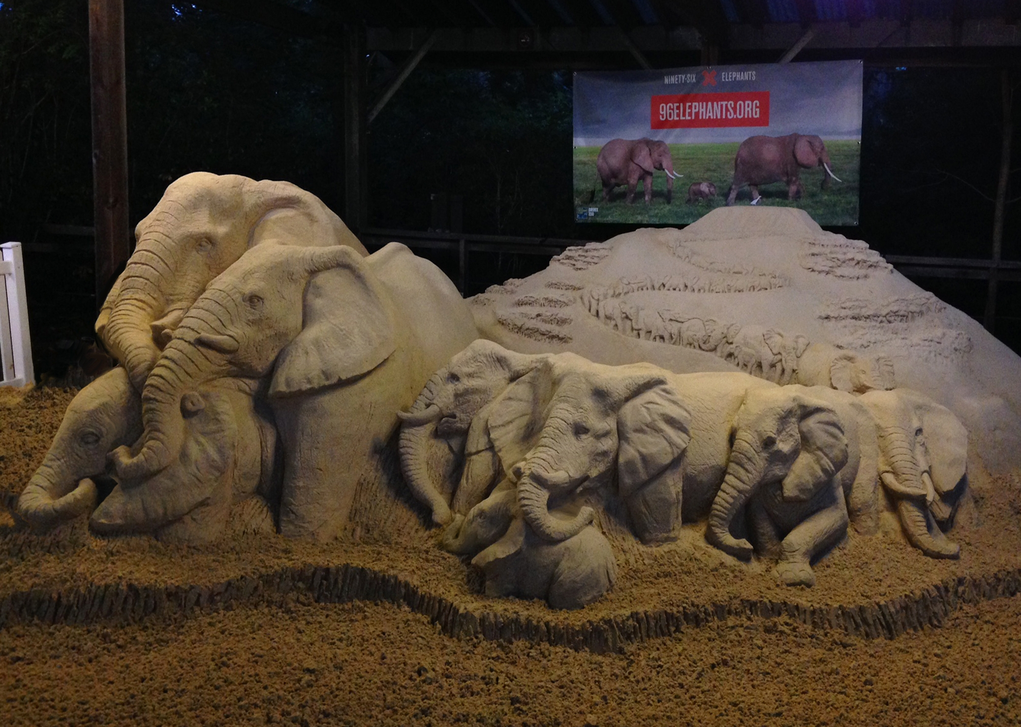 Elephants not branded.jpg