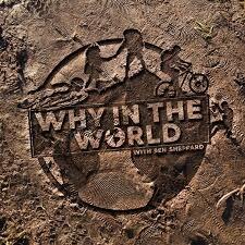Whyintheworldpodcast.jpg