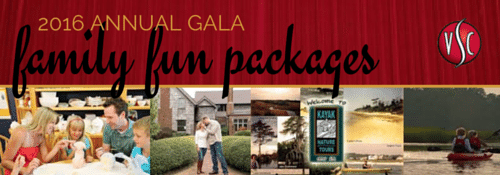 2016 Annual Gala Family Fun Packages