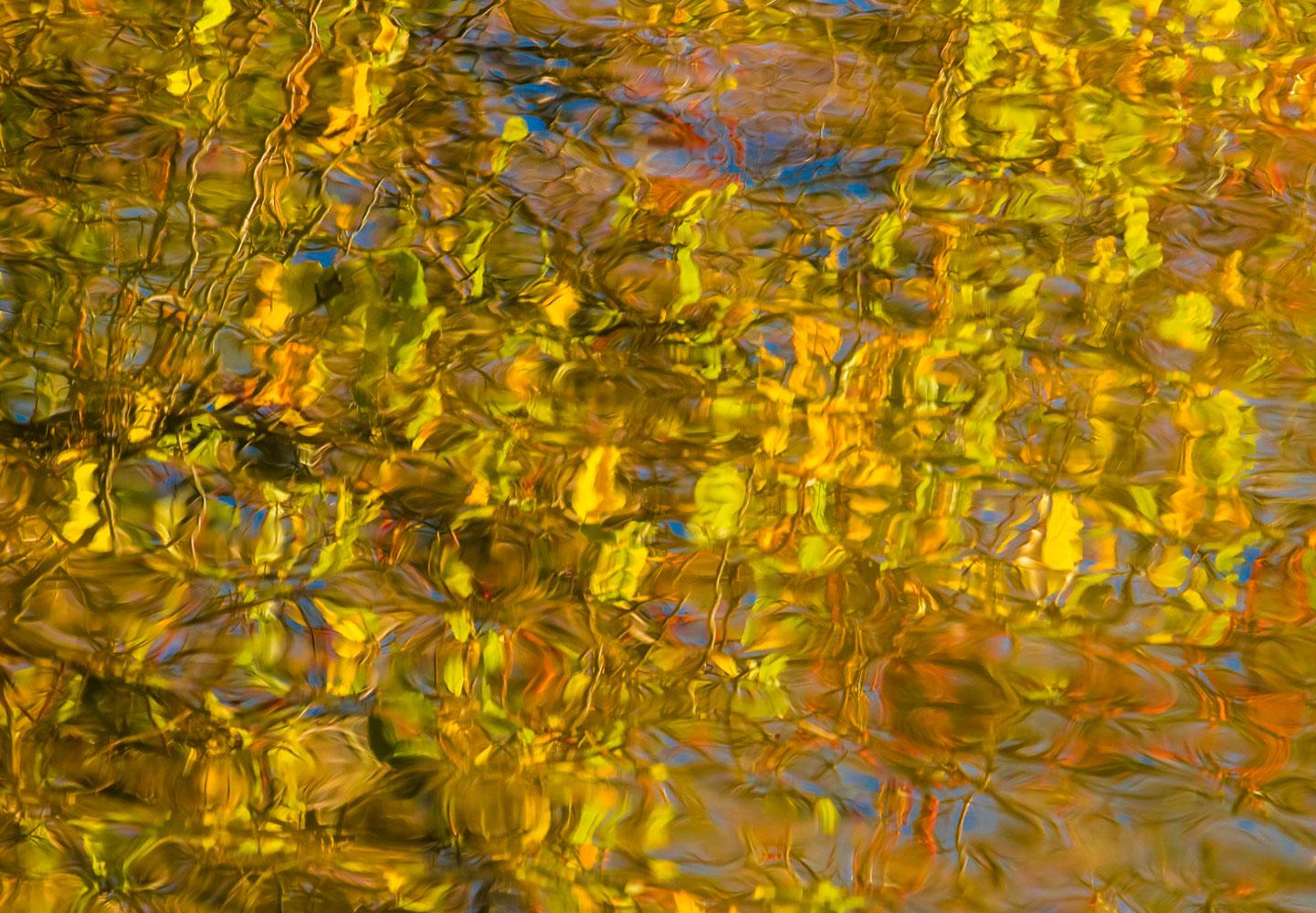 Liquid Light: Golden Radiance No. 1