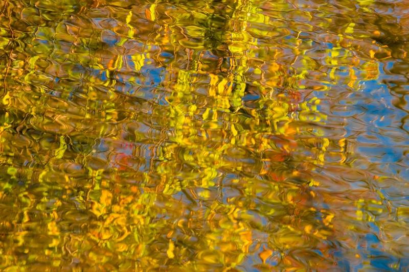 LiquidLightGodenRadiance2_1511-3-8948.jpg