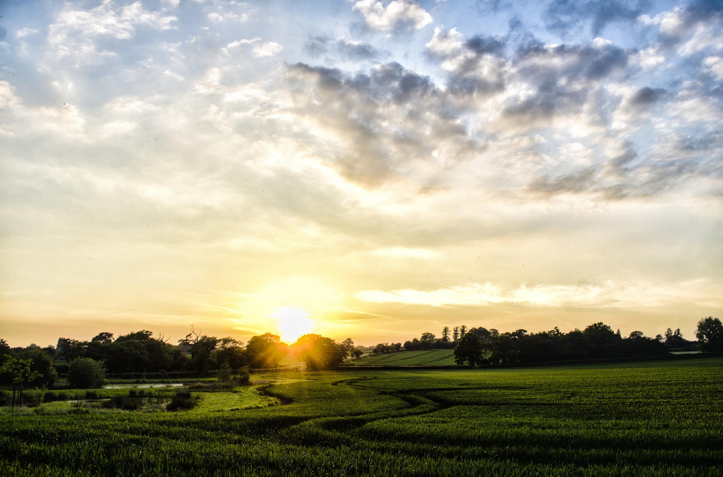Endless Sunset