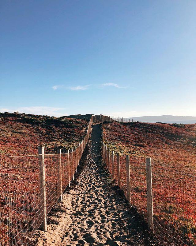 Monterey, California circa 2018 🏄🏽♂️ . . . #travel #monterey #explore #california #igexplore #wanderlust #beautiful #cali  #westcoast #discover #sunset