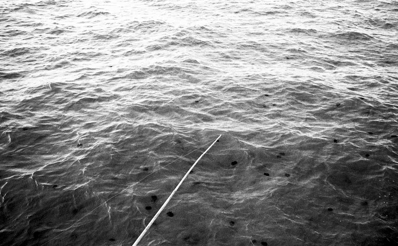 norberto-tongoy-reflections-photo-12.jpg