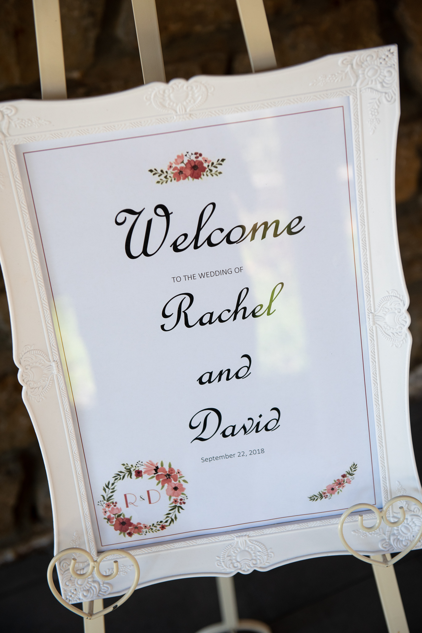 Rachel_David_TSLR-38.jpg