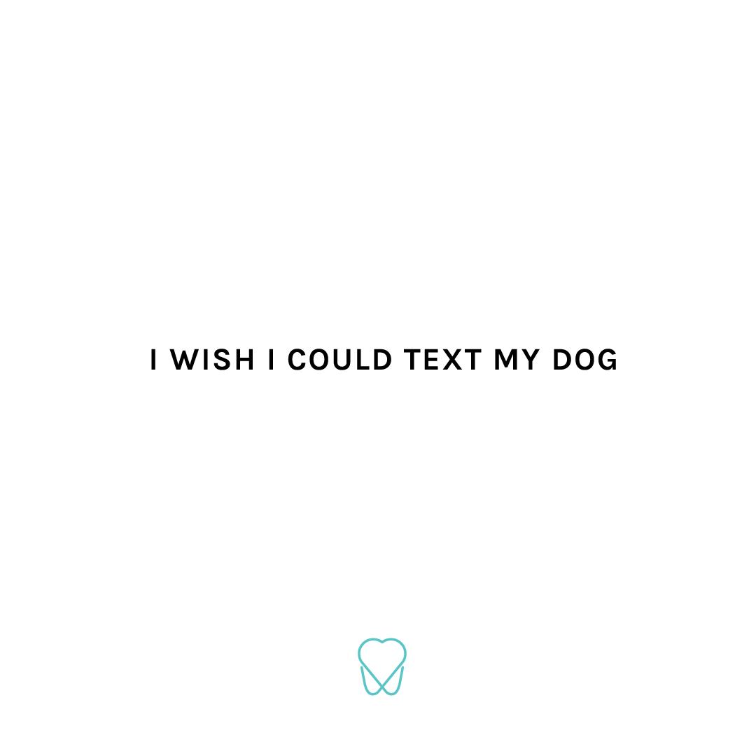 TextDog.png