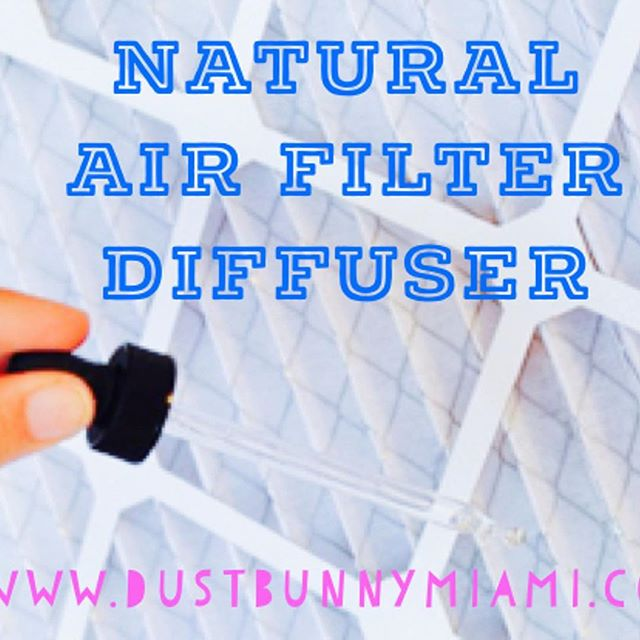 Today we share our cleaning tip to scent your entire home in one easy step, using your air filter! This is a safe and budget friendly diffuser that will keep your space smelling great, whenever you want to add a hint of natural scent . Ingredients & Tools Air filter (sizes vary per unit) Your Favorite Essential Oil (we use lemon) . To Make Jot down the size of your air filter and purchase at your local store. Buy extra so you don't have to do this again next month . To Use Turn off the your air unit. Before replacing the air filter, squeeze a few drops of your favorite essential oil onto the filter. Put the filter in place and turn the air unit back on. The scent will diffuse each time the air unit turns on . #dustbunnymiami #naturalcleaning #miamicleaning #brickell #coconutgrove #coralgables #doral #kendall  #palmettobay #westchester #wynwood #miamivacation #airbnb #vacationrentals #officecleaning #miamirealestate #naturalcleaning #earthfriendly #cleanresponsibly #allnatural #chemicalfree  #crueltyfree #healthyhome #naturalhealth #wellness  #biodegradable #naturalcleaningtips #miamiculture #photooftheday #naturalproducts #essentialoils