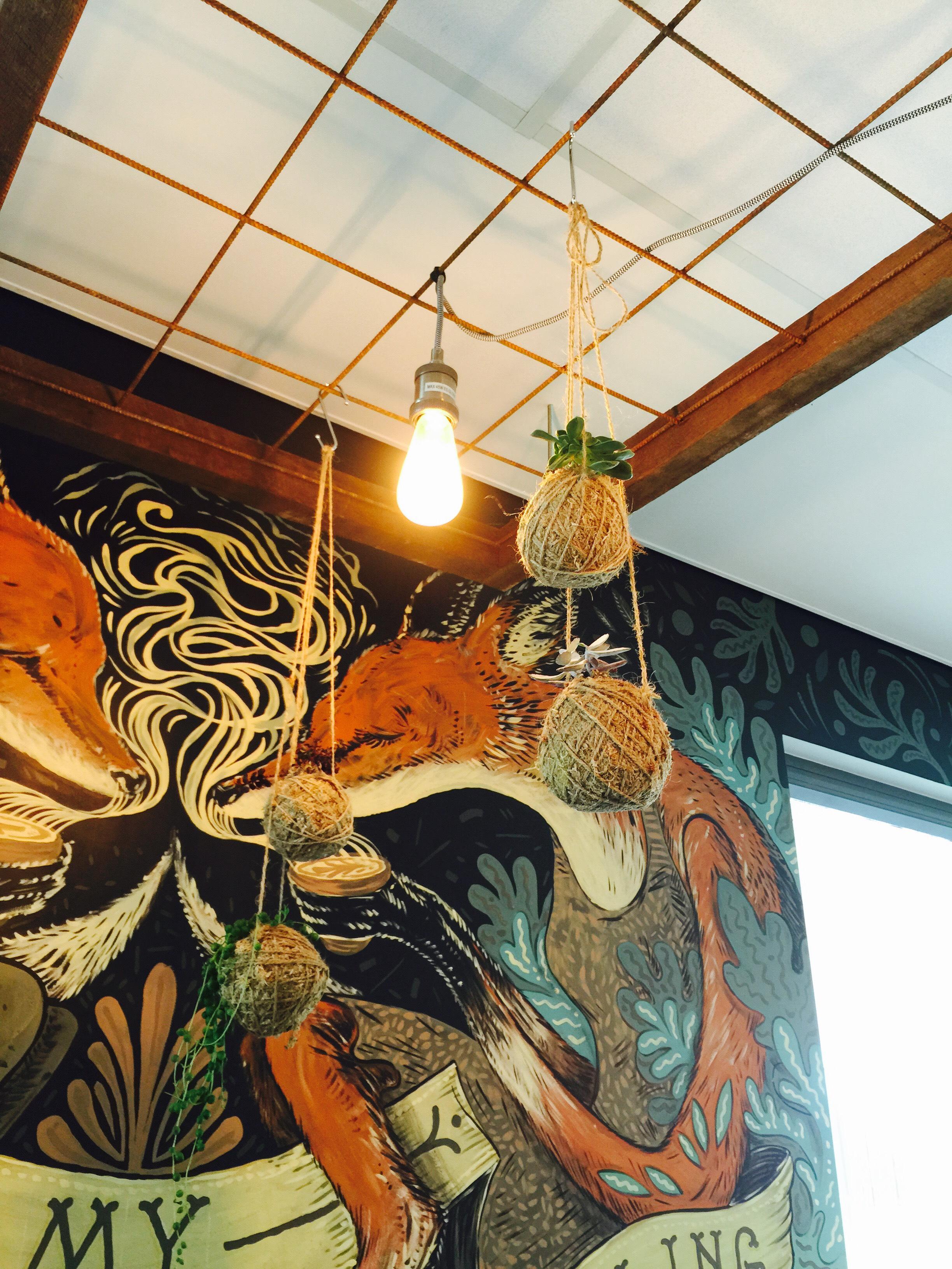 Timber Cafe Kokenest