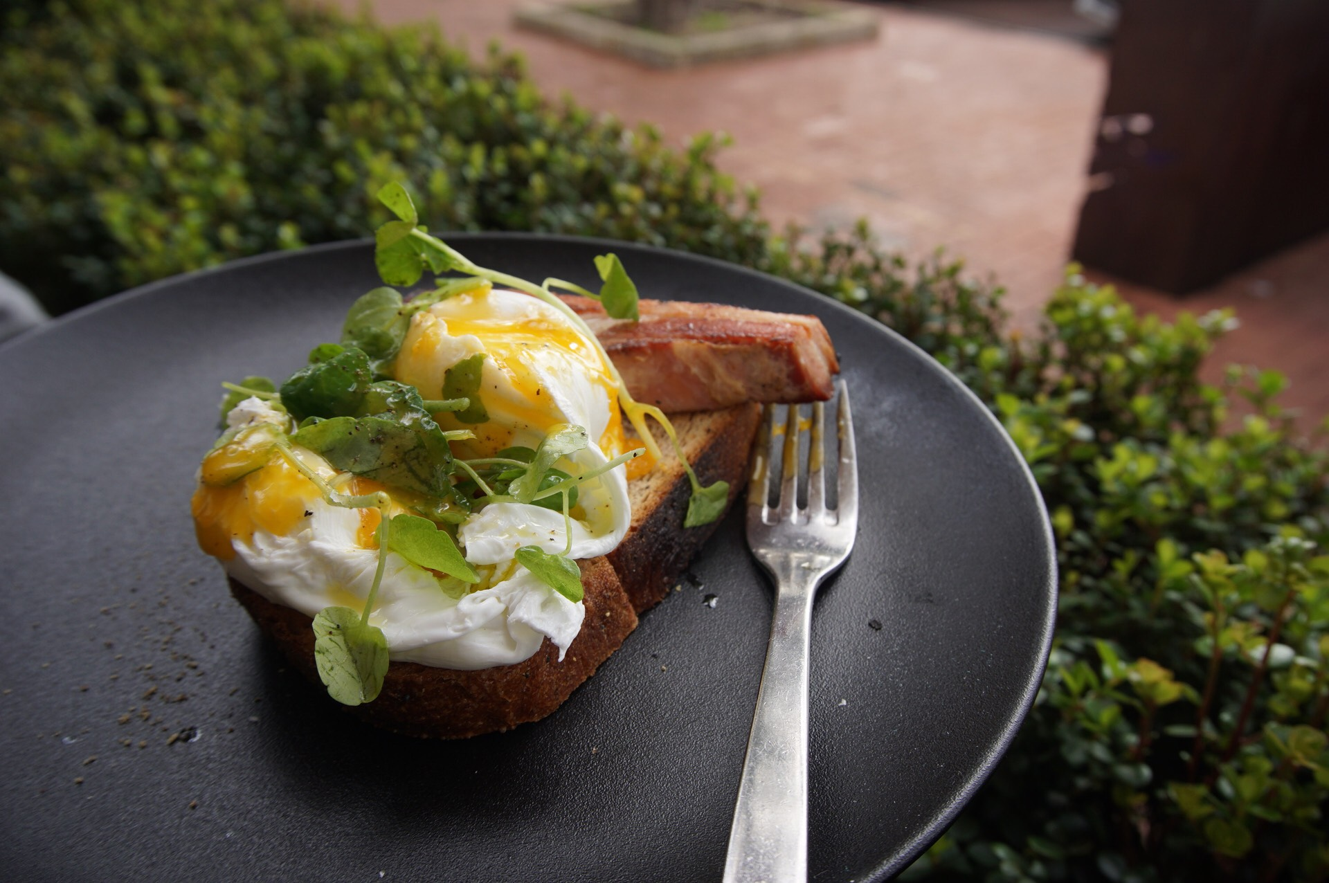Bacon and Eggs with watercress and poached eggs