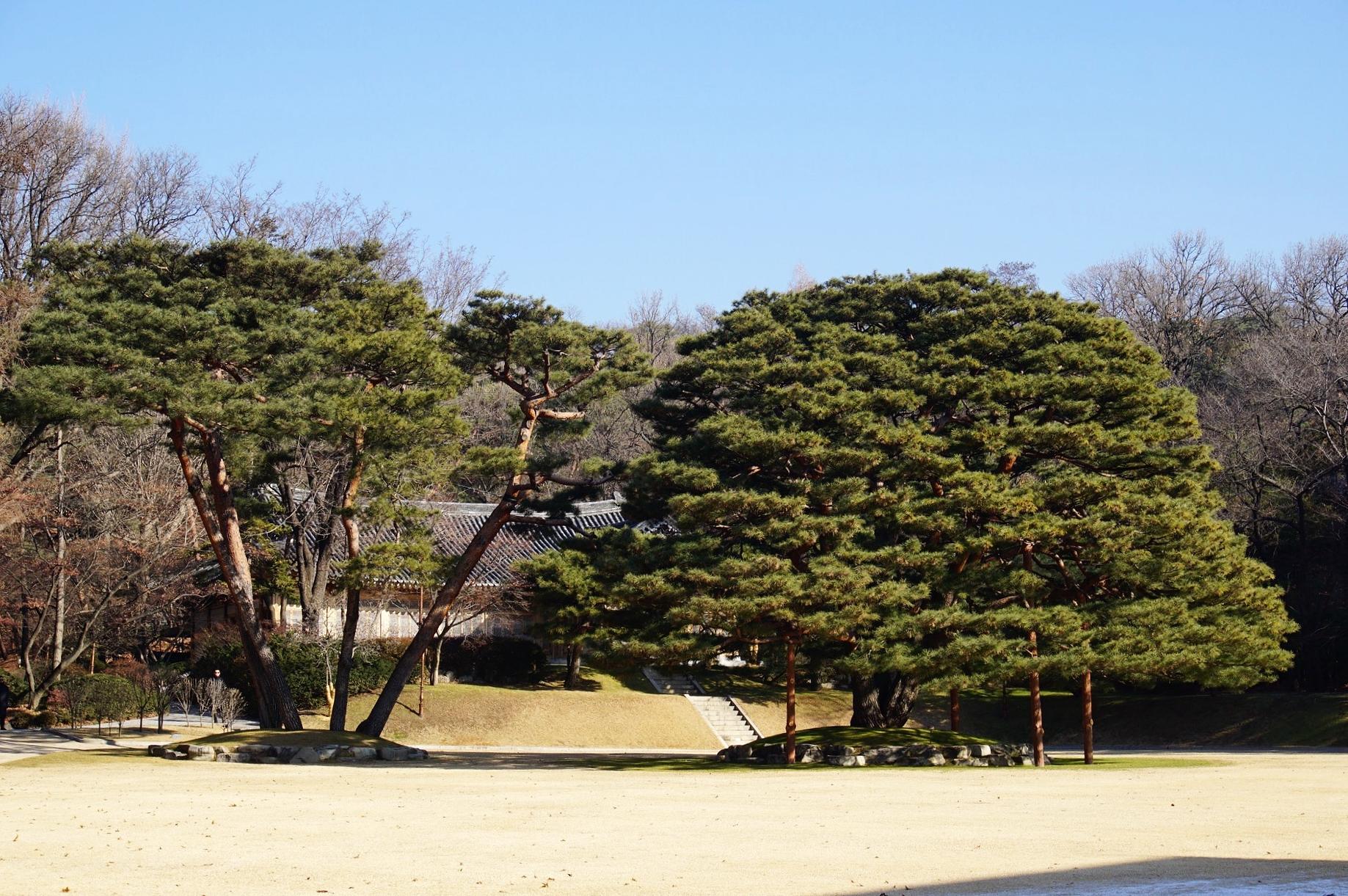 Nok Ji Won area