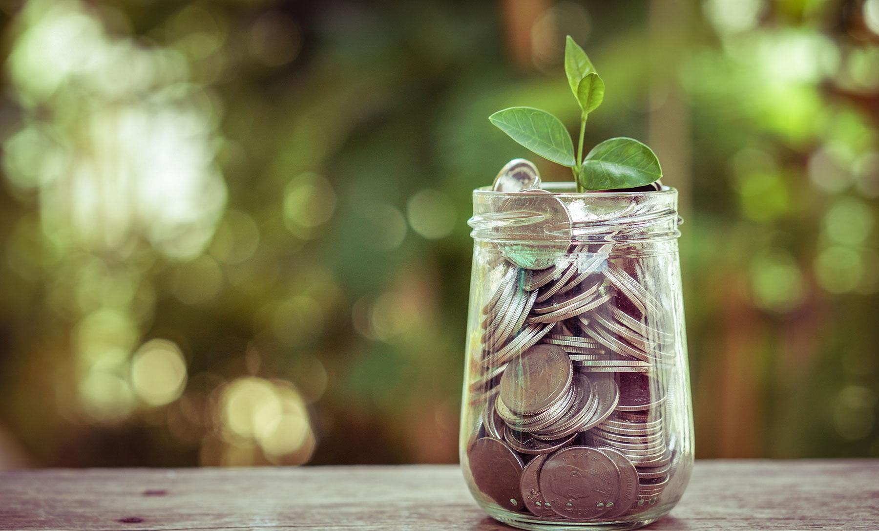 Account One Finance