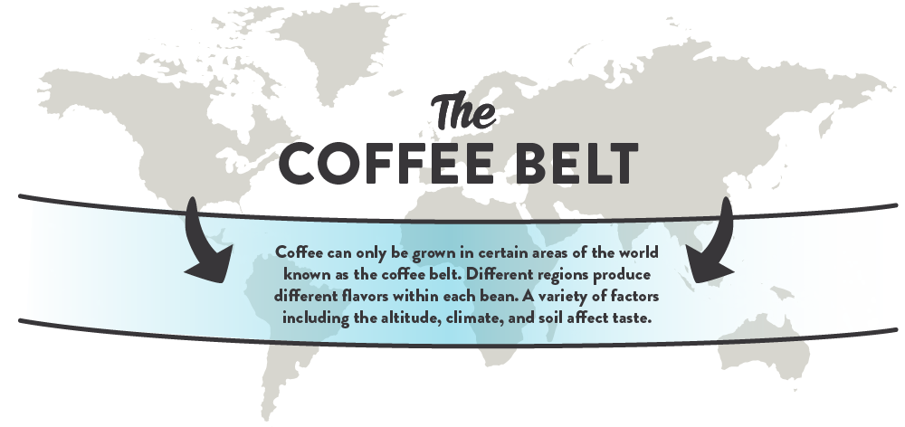 Coffee can only be grown in certain areas of the world known as the coffee belt. Different regions produce different flavors within each bean. A variety of factors including the altitude, climate and soil affect taste.