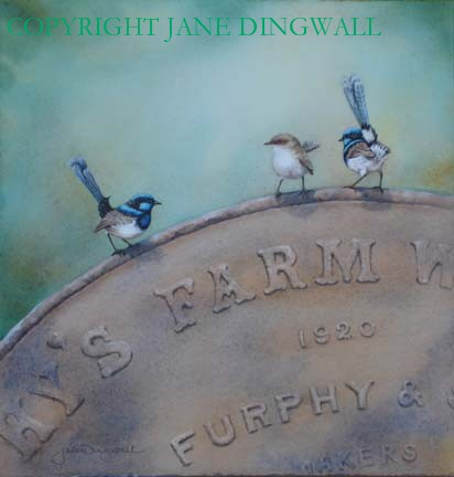 'Right Old Furfey' - Superb Blue Wrens -  Watercolour on Arches Paper